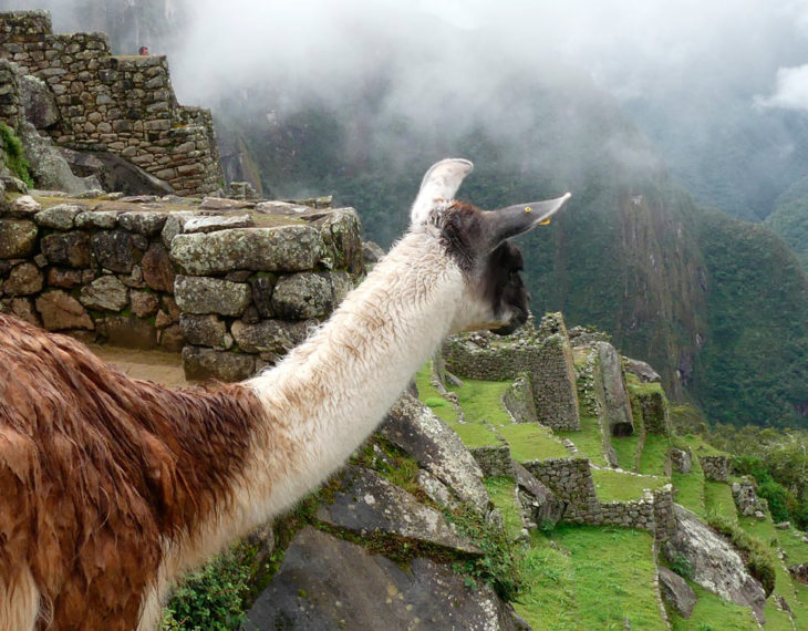 Andean Treasures – 13 days